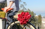 Roses Best Flower Delivery Service