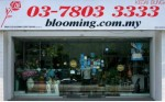 Beautiful Blooming Florist
