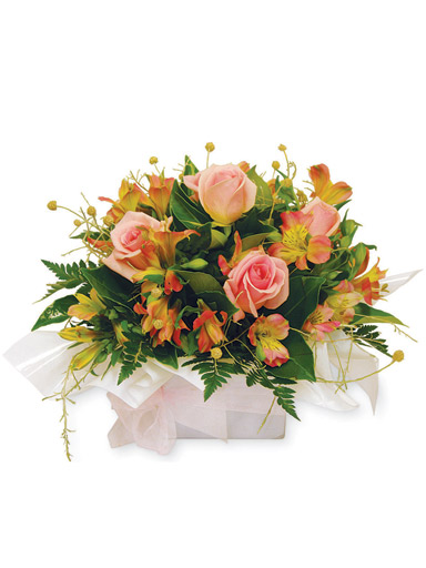 Quick Cheap Flowers Delivery