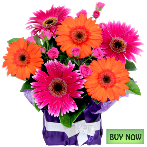 Colorful Cheap Flowers Online