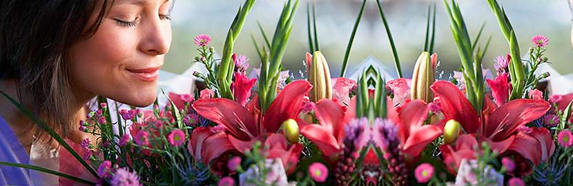 Enticing Delivered Flowers