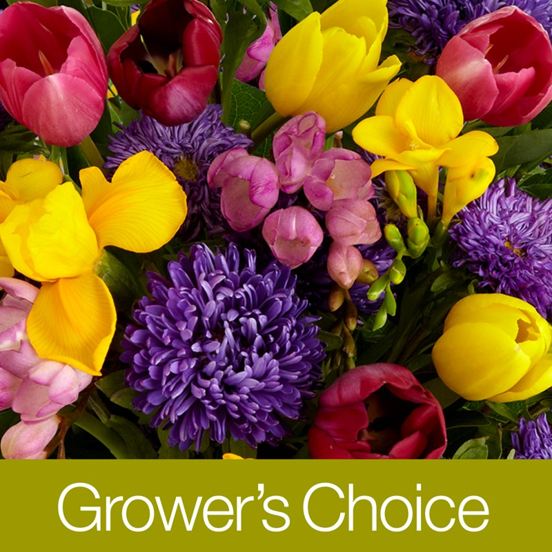 Best Discount Flower Delivery
