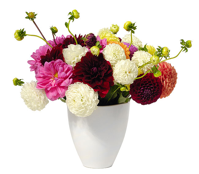 Admirable Flower Delivery Online