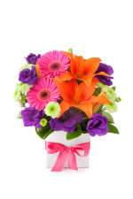 Colorful Flower Online