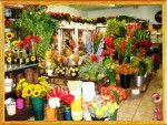 Outstanding Flower Shop