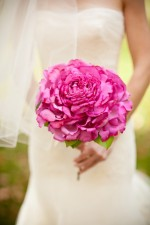 Pink Flowers For Wedding Bouquets