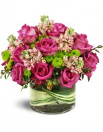 Amazing Free Delivery Flowers