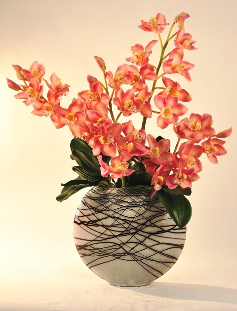 Amazing Orchids Delivered